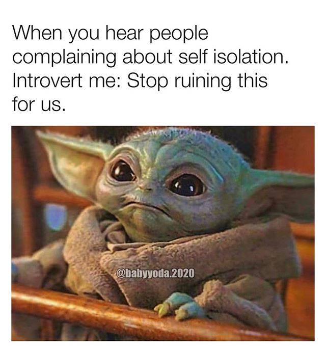 Babyyodamemes Hashtag On Instagram Photos And Videos Yoda Meme Yoda Funny Funny Babies