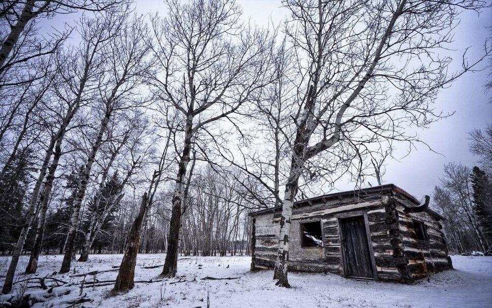 Invierno bosque caba a nieve rboles naturaleza paisajes wallpaper la nieve en la - Cabana invierno ...