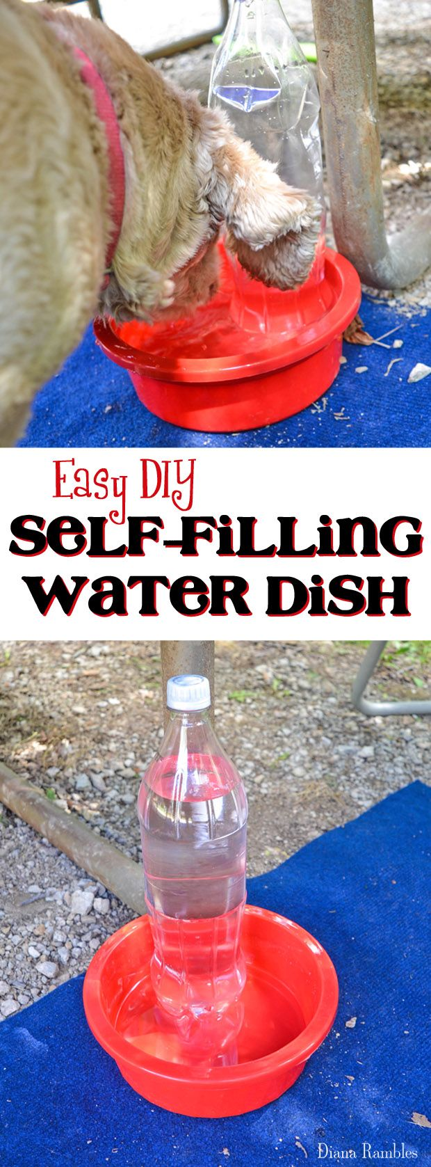 DIY Self Filling Water Dish for Your Pet How to make an