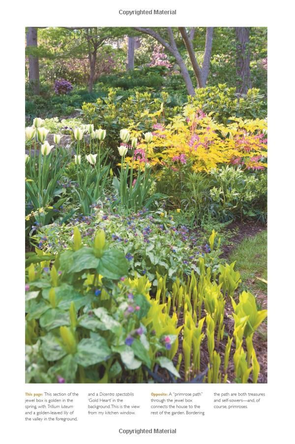 The Layered Garden: Design Lessons For Year Round Beauty From Brandywine  Cottage: David