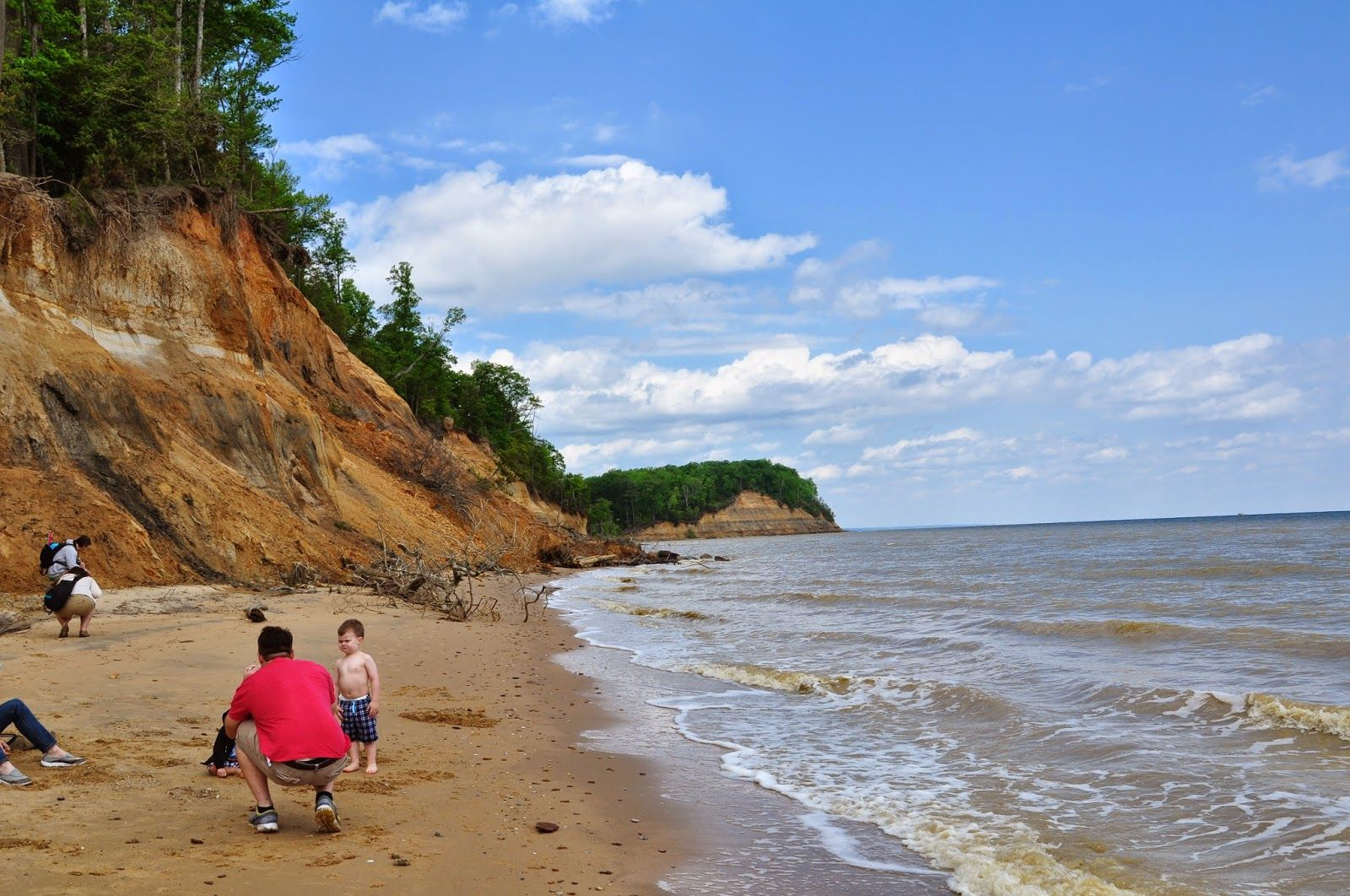 Beach Combing At Calvert Cliffs State Park With Images