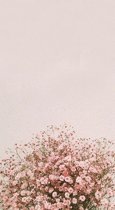 35 Phone Wallpapers To Make Flowers Grow On Mobile Phones Beautiful Flower Mobile Floral Wallpaper Iphone Flower Iphone Wallpaper Flower Background Wallpaper