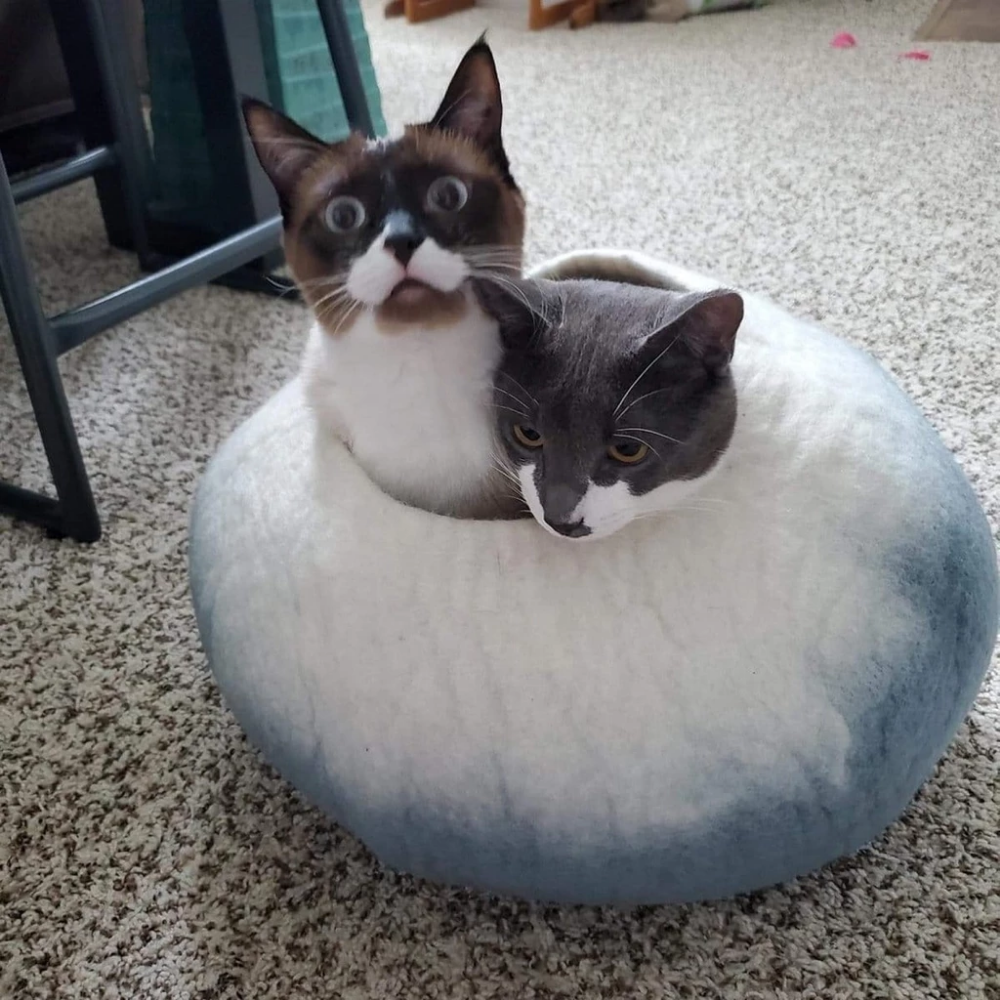 Cat Cave Co Luxury Felted Wool Hand Made Cat Beds Cat Bed