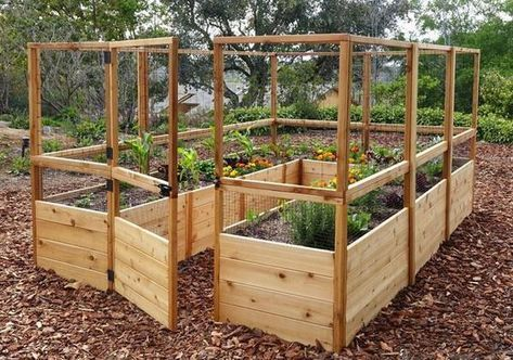 Outdoor Living Today - RB812DFO Raised Garden Bed 8 x 12 ...