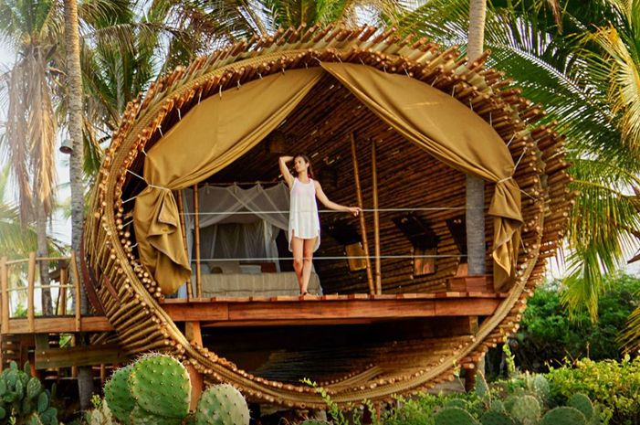 worlds epic tree houses you can actually stay in the active times - Most Expensive Tree House In The World
