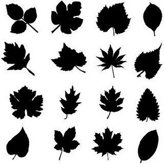 Leaf silhouettes leaf shapes for flower making Leaf stencils