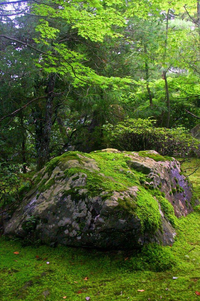 Kyoto, Japan - Ryoan-ji в 2020 г | Пейзажи, Природа, Сад