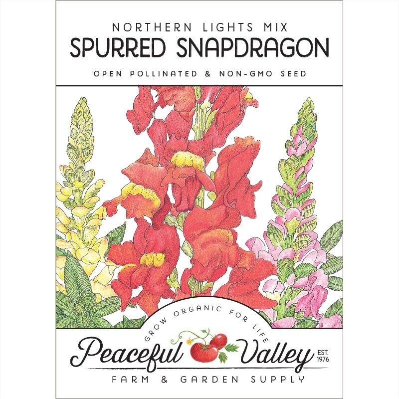 Snapdragon, Spurred (pack) Wildflower seeds, Multi