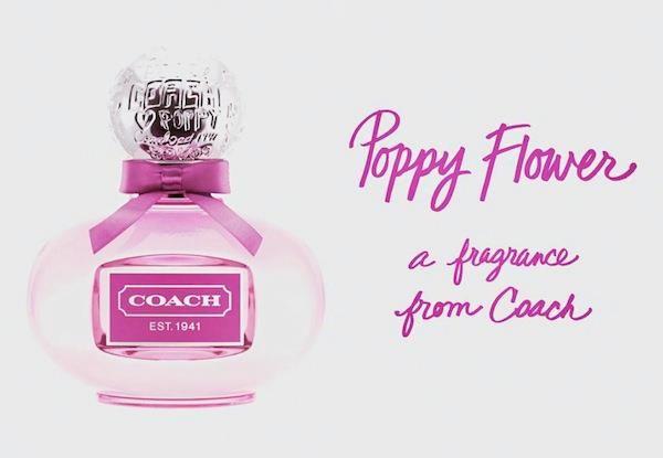 Poppy flower coach 100ml rm50 including postage cool stuff to buy poppy flower by coach perfume mightylinksfo
