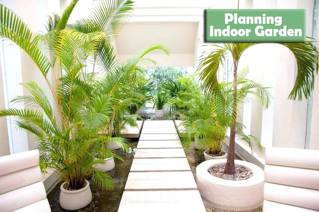 entracing palm tree type house plant. Amazing Indoor Garden Design Ideas  Bring Life into Your Home Interiorscaping Pinterest Gardens gardening and ideas