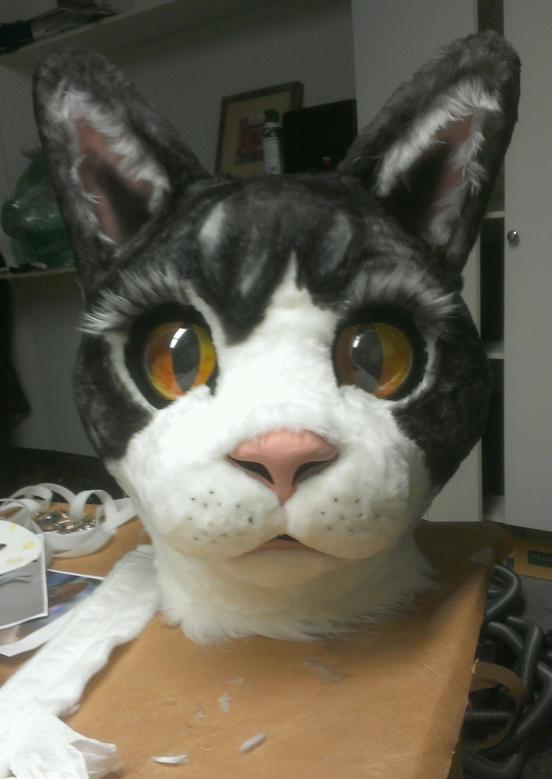 PETUNIA how to make a paper mache cat head