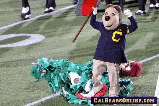 How College Teams Got Their Nicknames California Golden Bears Cal Bears Golden Bears