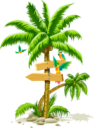 Tropical Palm Tree Png Palm Tree Clip Art Palm Tree Drawing Tree Clipart