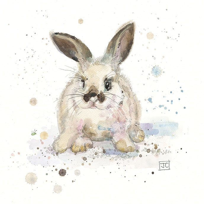 Baby Rabbit in watercolour and pastel by Jane Crowther, Bug Art