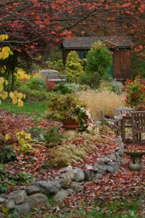 Heide's Garden this fall, covered in red maple leaves.
