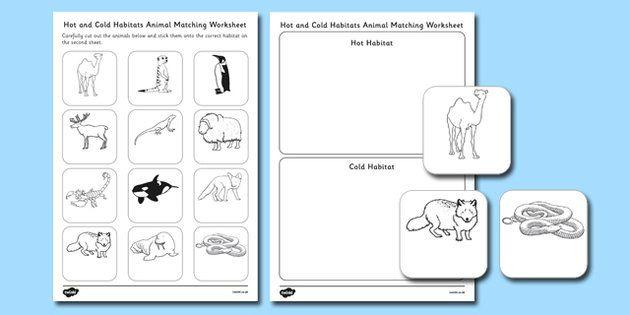 Hot and Cold Habitats Animal Sorting Worksheet - hot, cold ...