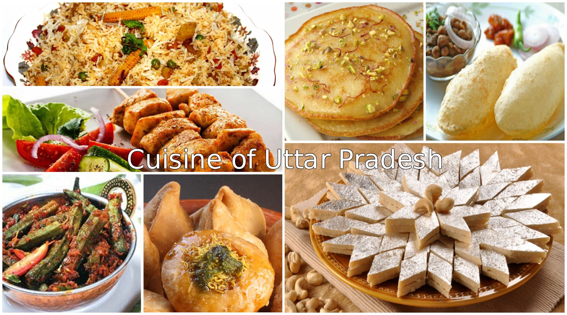 with the variety of dishes in north indian states you u0027ll get a