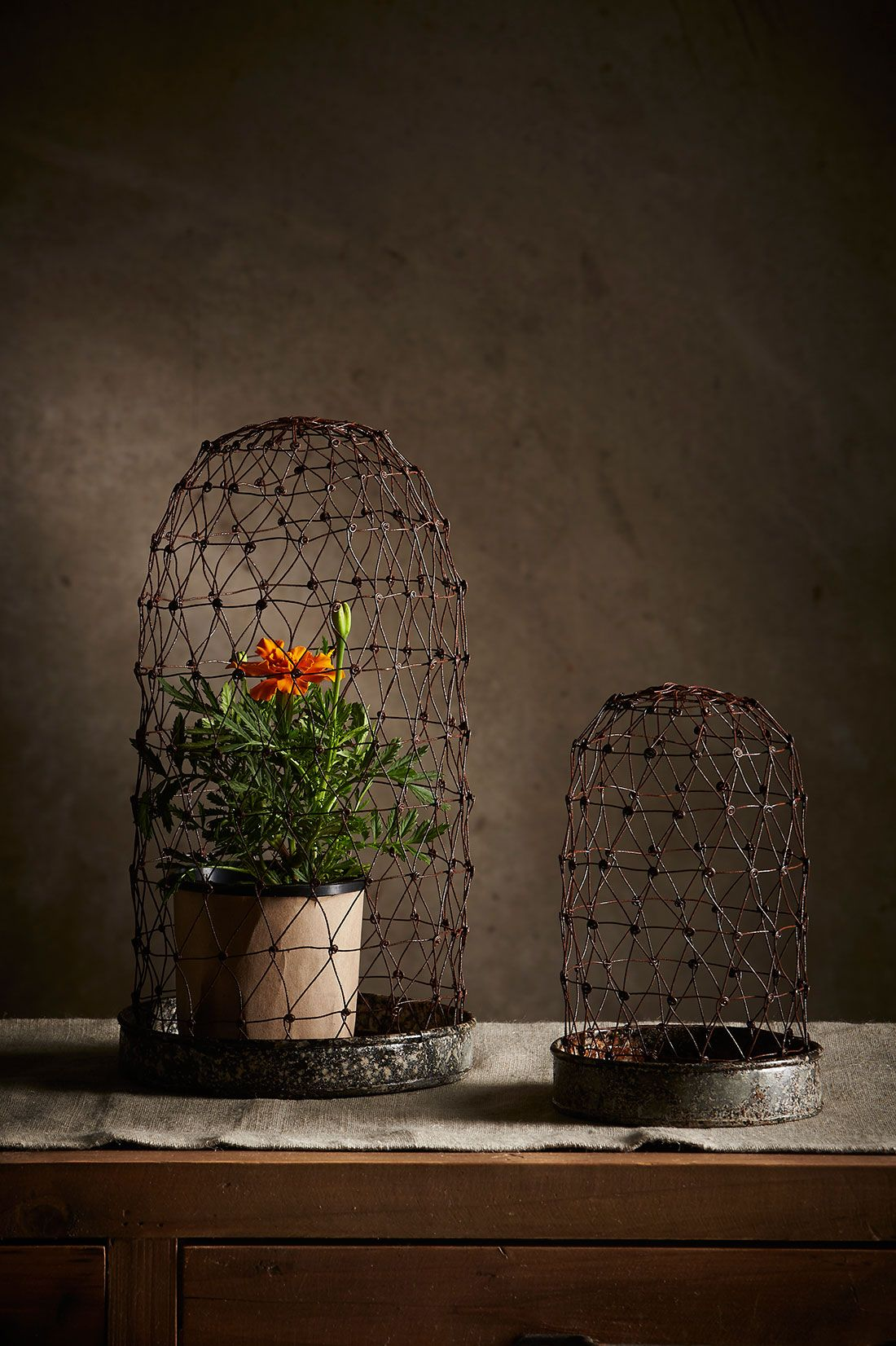Wire Domes: Large + Small