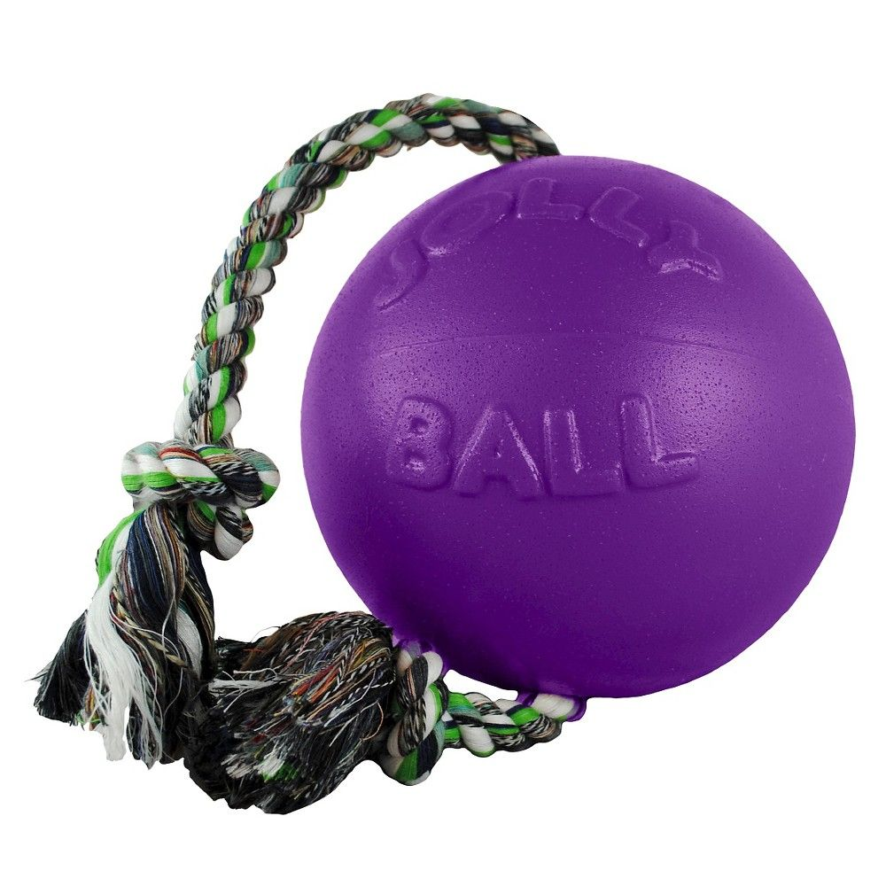 Jolly Pets Romp N Roll Pet Toy Dog Toy Ball Dog Toys Dog Ball
