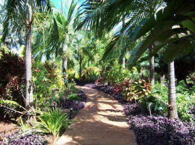 Etonnant National Tropical Botanical Garden, Kauai