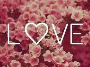 imagem amor