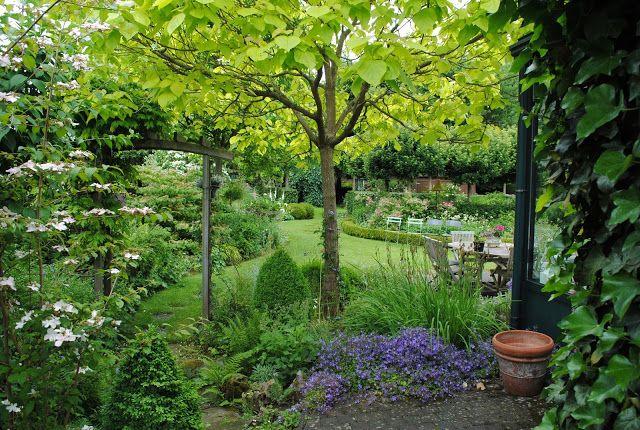Mes Arbres Pour Mon Petit Jardin Landscape Design Plants Garden