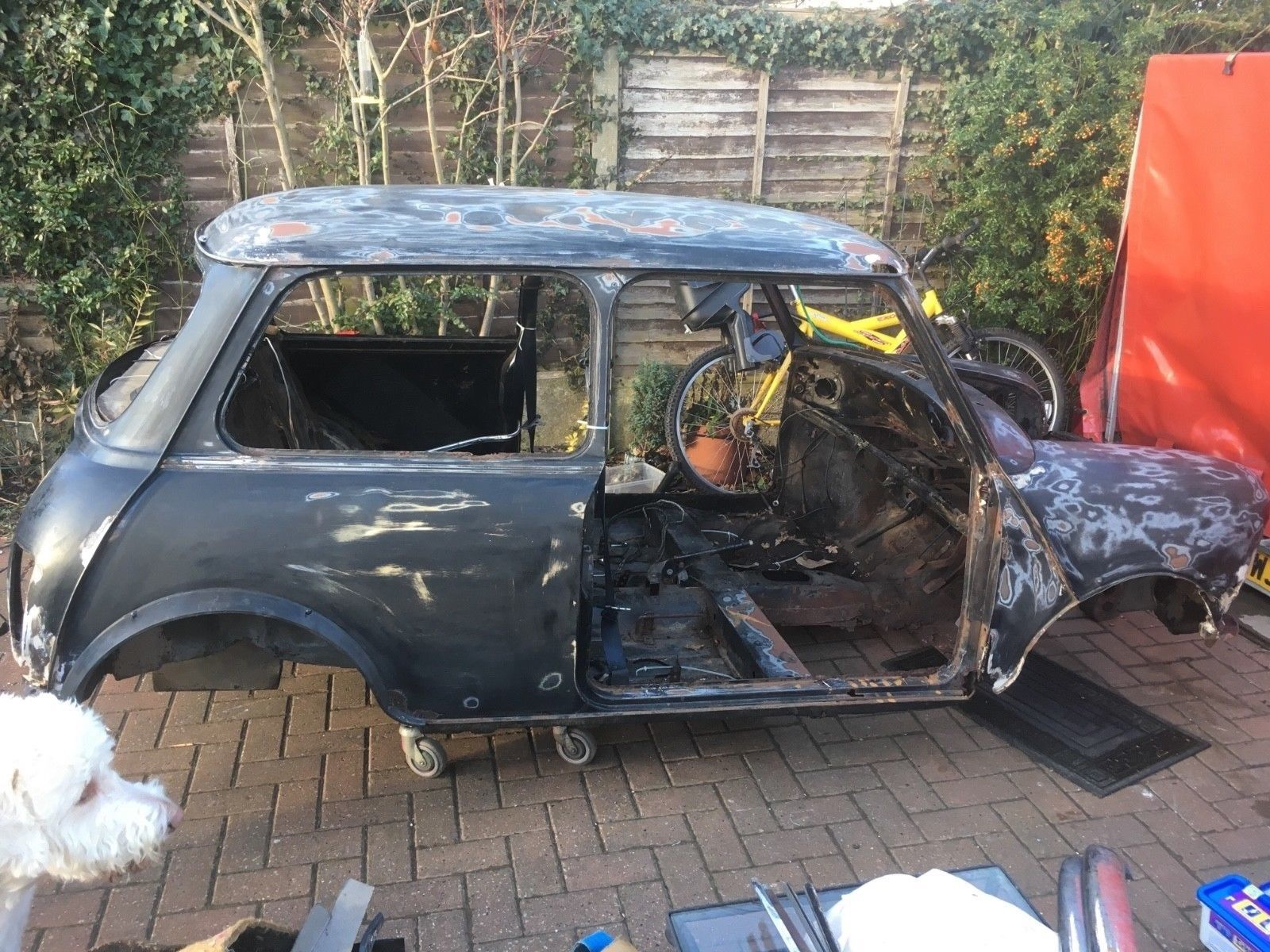 Classic Mini Project Barn Find Restoration Barn Find Restoration Barn Finds Classic Mini