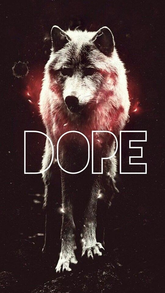 Wolf Wallpaper Hipster Red Wolves Art Space Beautiful Thug Life Animal Kingdom Backgrounds
