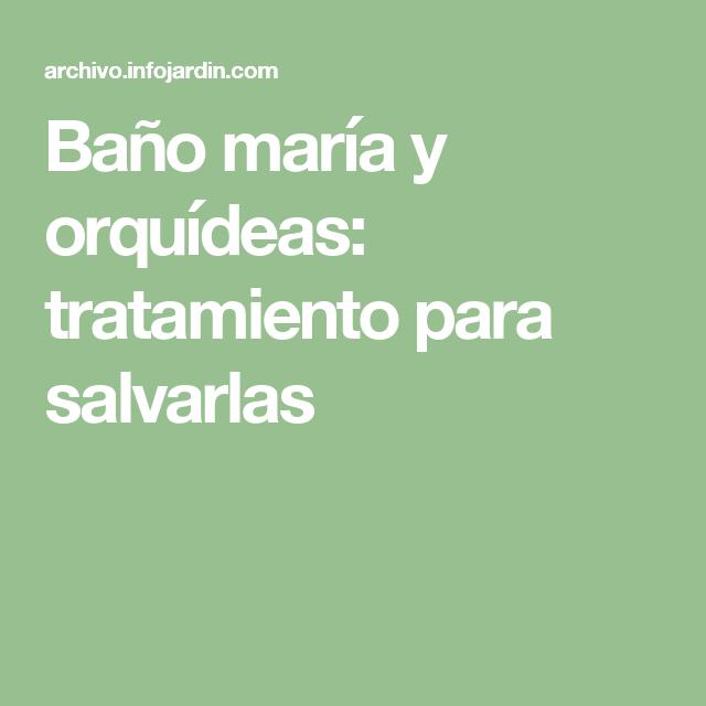 Bano Maria Y Orquideas Tratamiento Para Salvarlas Orquideas