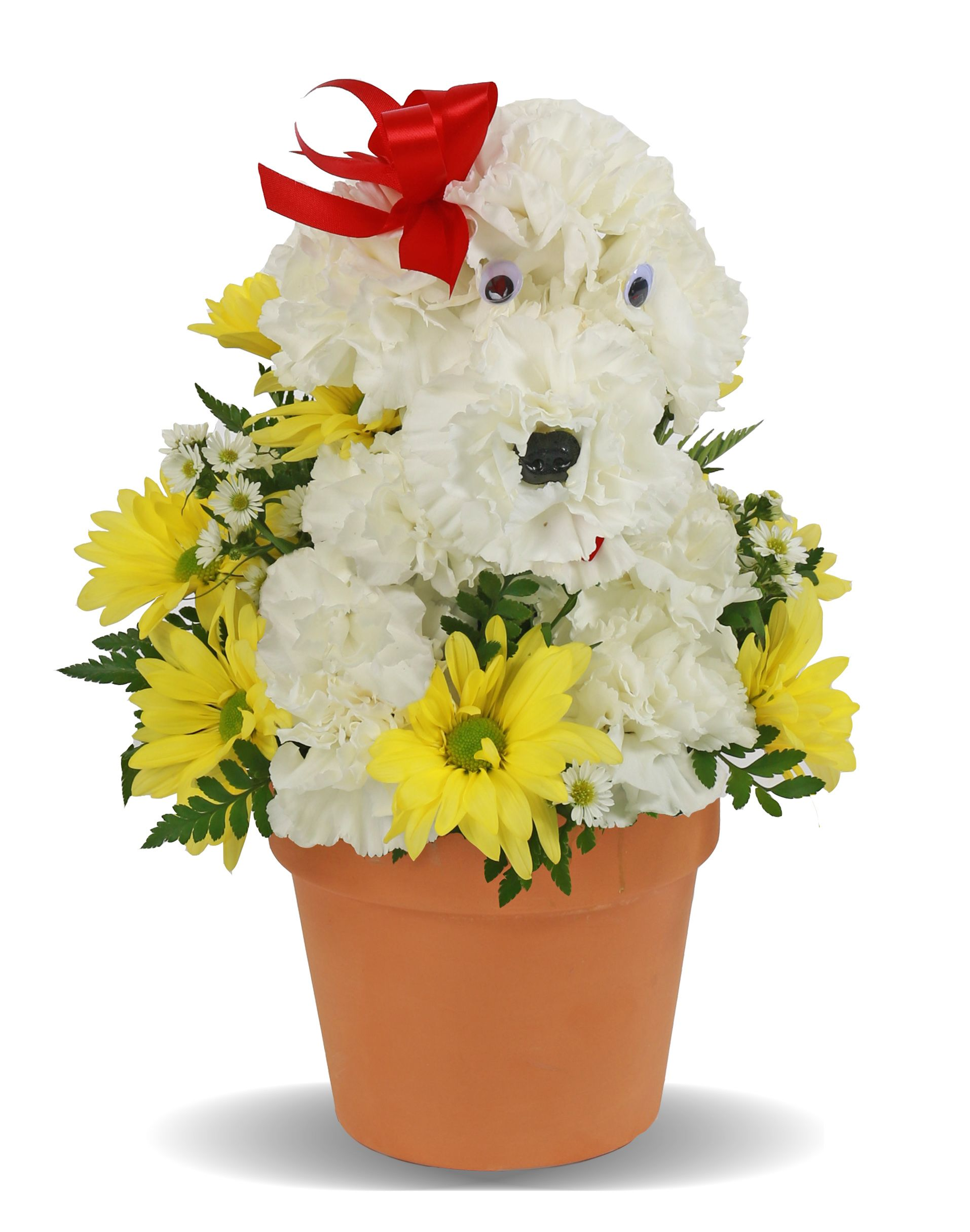 Hot Diggity Dog Birthday Flowers For Kids Columbus