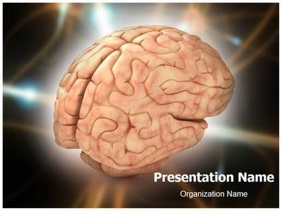 Download our state-of-the-art brain #PPT #template  Make a brain