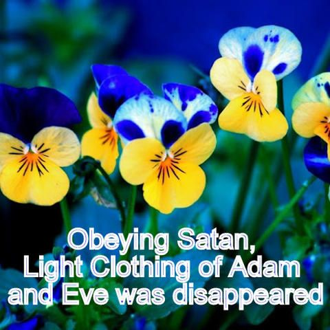 Obeying Satan, Light Clothing of Adam and Eve was disappeared | A Complete Code of Life - Islam