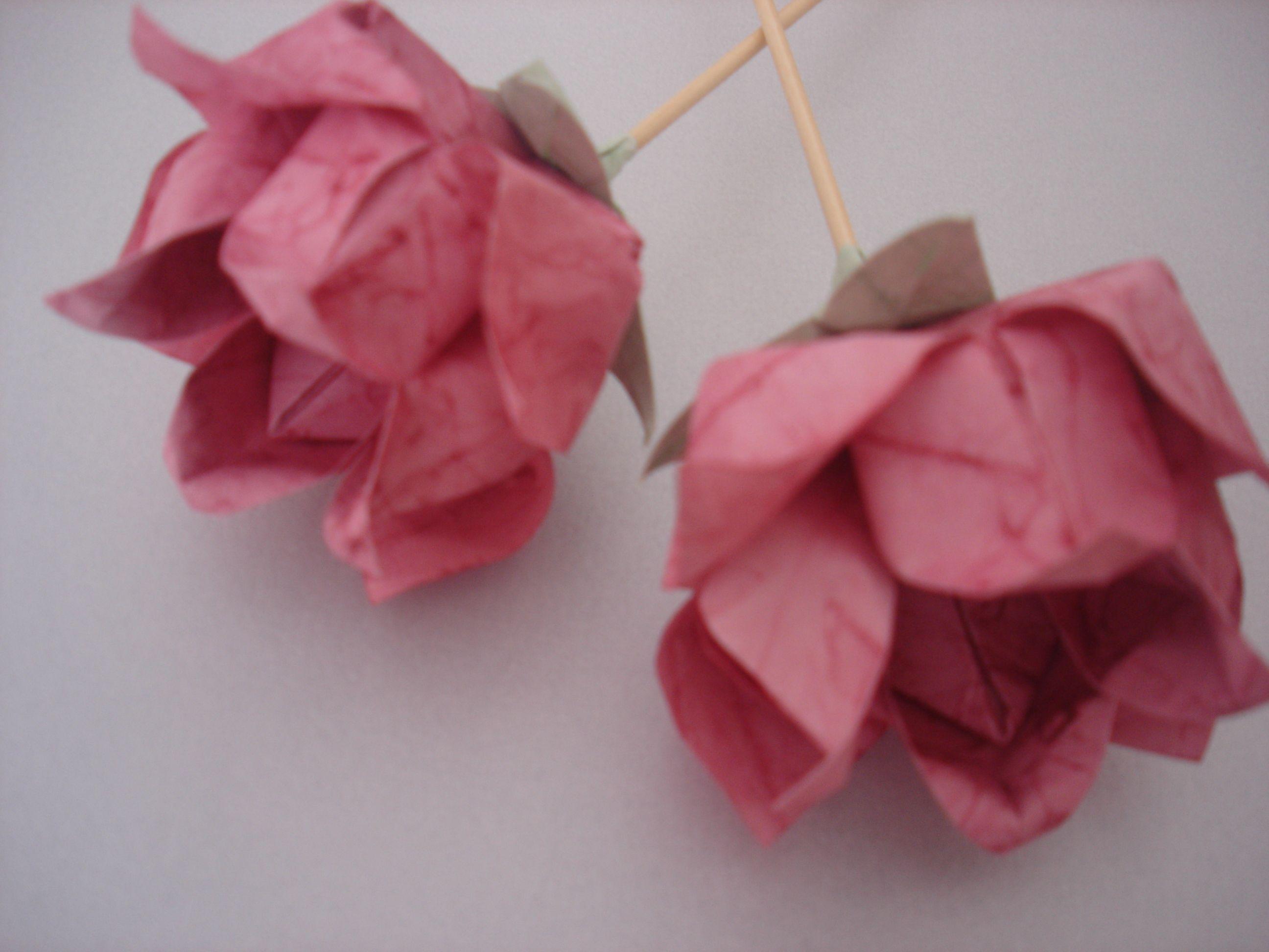 Origami Beautiful Flower Origami Rose Pinterest Origami
