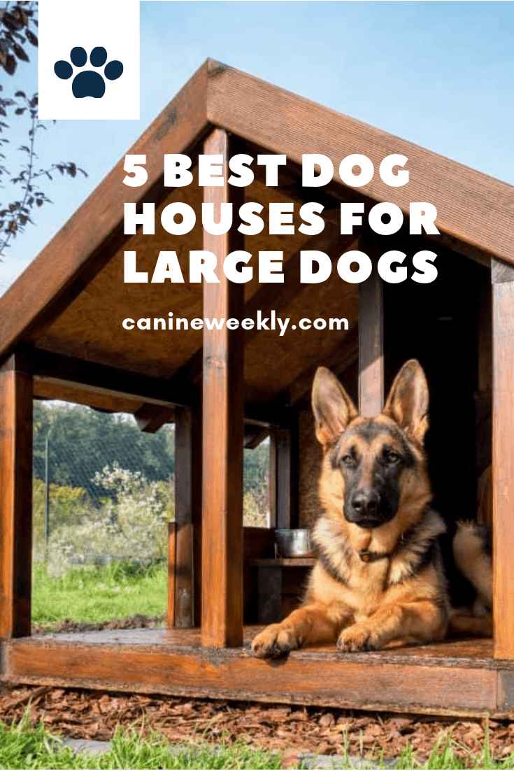 5 Best Dog Houses for Large Dogs (2020 Reviews) Cool dog
