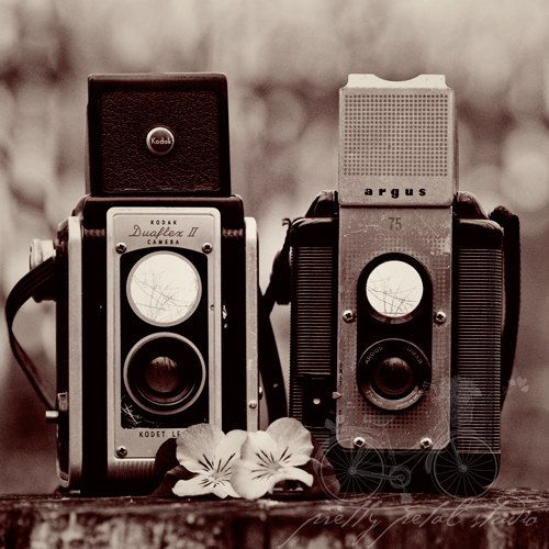 Fine Art Photograph Two Vintage Cameras Retro By Prettypetalstudio 45 00 Vintage Cameras Fine Art Photographs Classic Camera