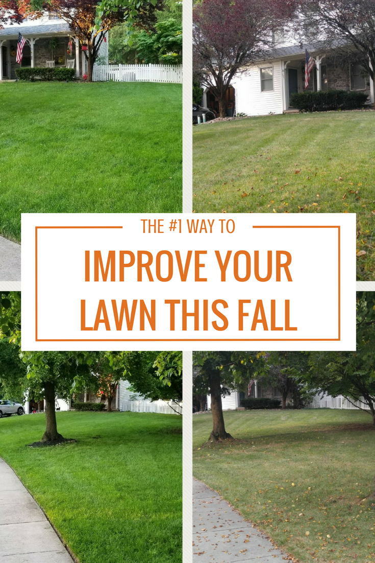 Article Headline Fall Lawn Lawn And Landscape Garden Care