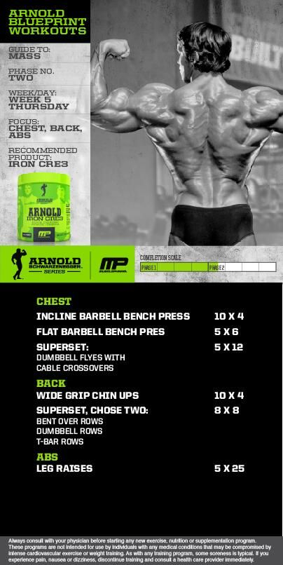 arnoldu0027s chest superset routine Superset Pinterest Routine - new arnold blueprint ebook