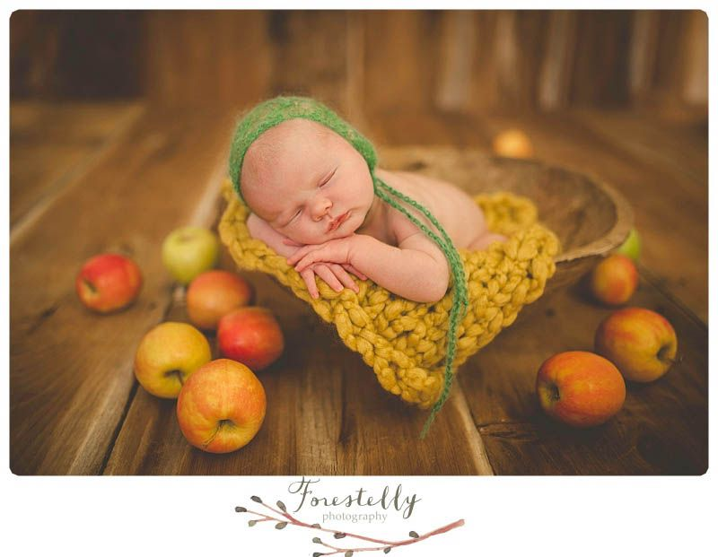Newborn photography madison wisconsin www forestellyphotography com