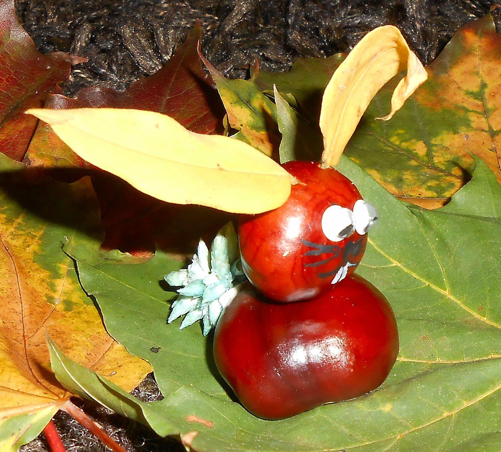 bonhommes en marrons pommes de pin et pot pourri suite la maison f erique automne. Black Bedroom Furniture Sets. Home Design Ideas