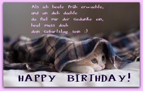 Spruch Geburtstag Katze