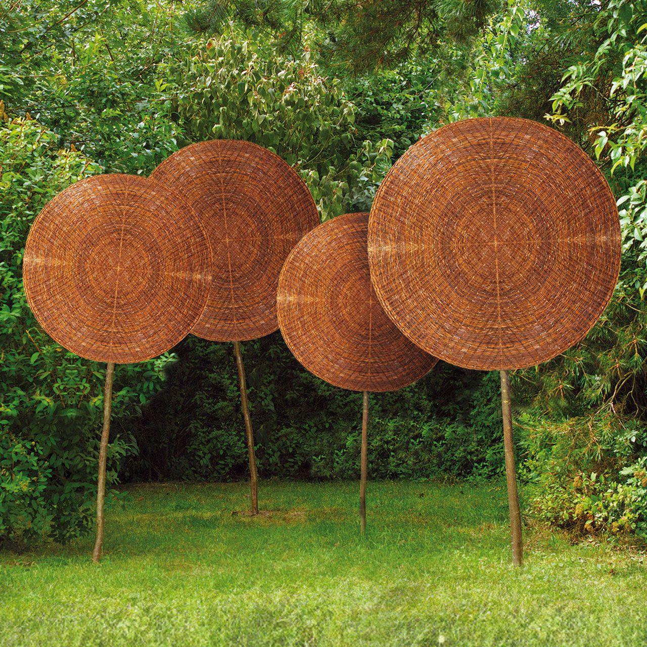 SichtschutzWeidenbaum Laubbaum, natur Laubbaum