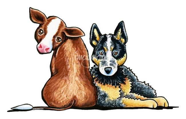 Australian Cattle Dog By Off Leash Art Austrailian Cattle Dog Cattle Dog Cattle Dogs Rule