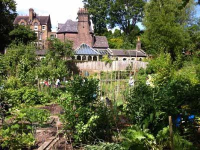 Branch Hill Allotments Saturday 14 00 17 00 Sunday 14 00 17 00 Hidden Garden House Styles Mansions