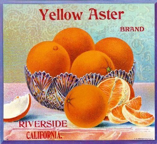 Riverside White House Orange Citrus Fruit Crate Box Label Art Print