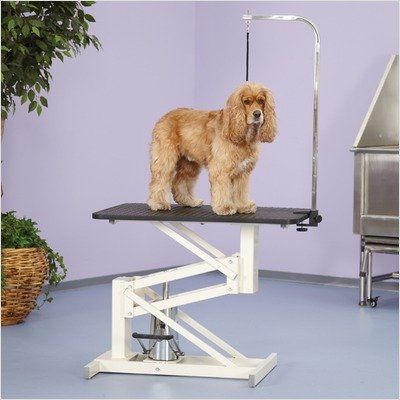 511 60 511 60 Master Equipment Z Lift Hydraulic Grooming Table Offers Superior Stability And Handy Features That Gr Pet Supplies Wholesale Grooming Dog Table