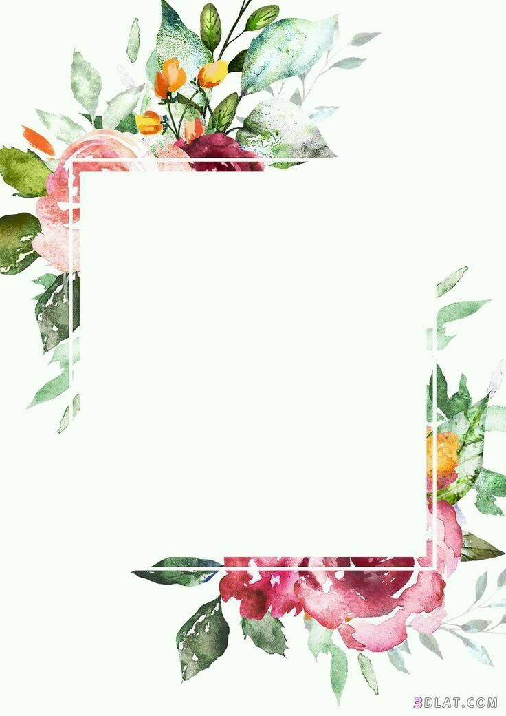 اطارات ورود فارغه للتصميم اجدد الاطارات والبراويز للكتابه عليها2019 Fondos De Flores Fondos Para Tarjetas Fondos Para Textos