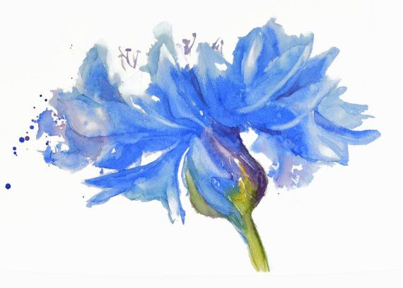 Single Large Flower Blue Floral Art Watercolor Painting Print
