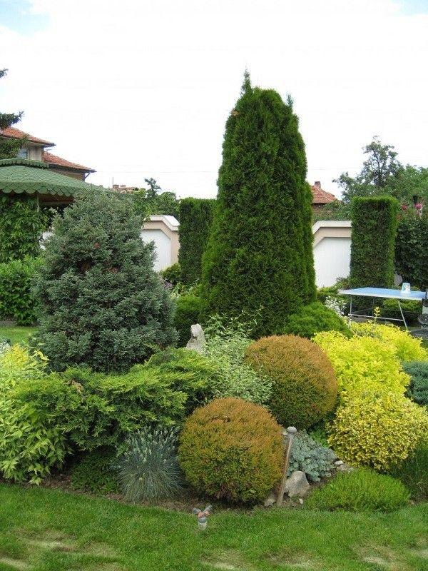paisajismo y jardinería con arbustos Exteriores, Terrazas