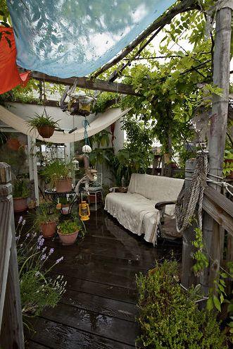 Grune Oase Aus Dem Balkon Wird Ein Kleiner Dschungel Mitten In