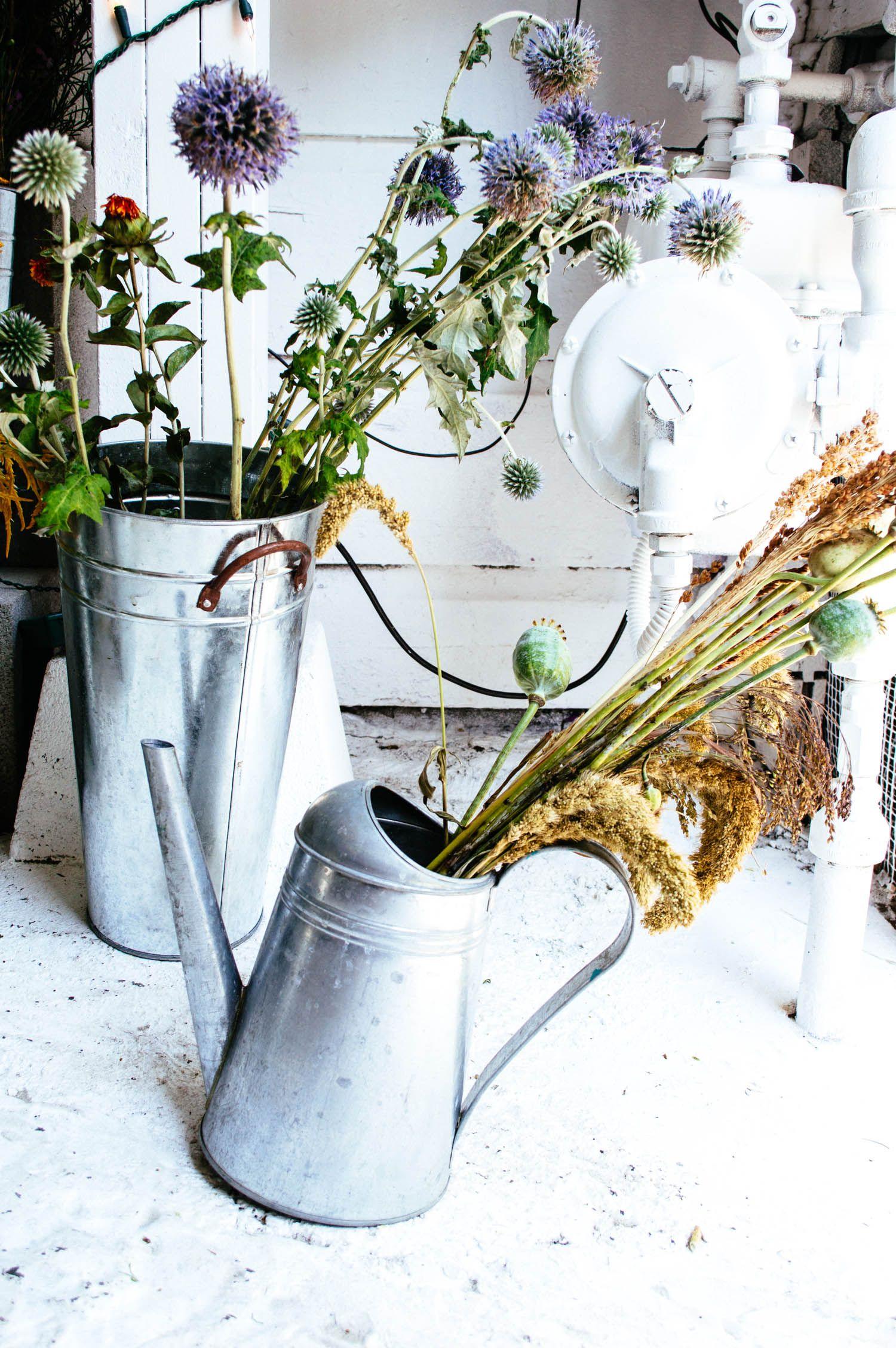 Ampersand flower shop san francisco flower shop